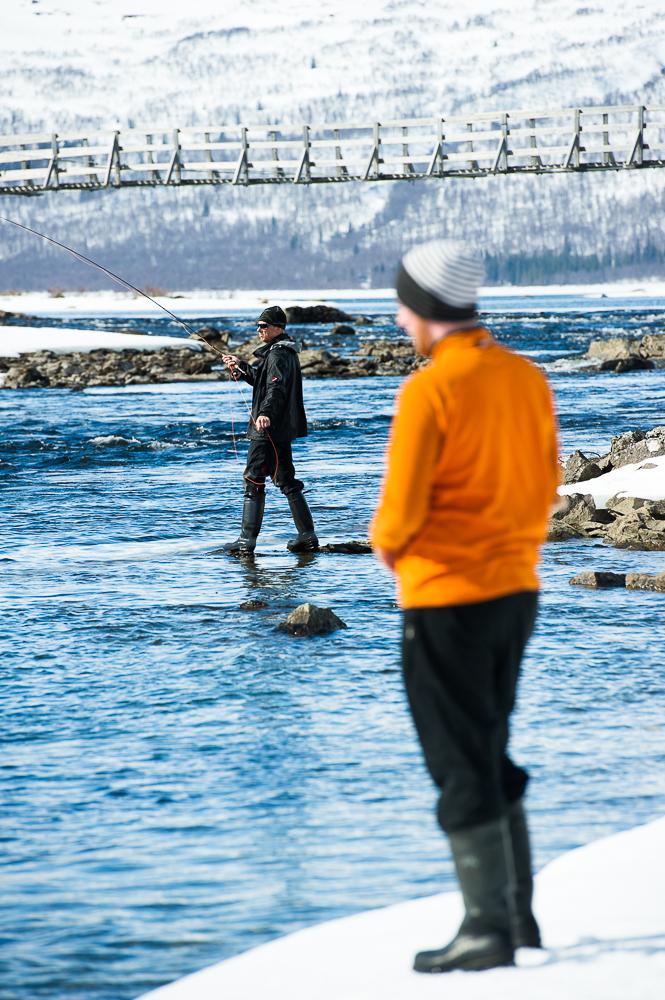 fiske_marianne_lindgren-1244